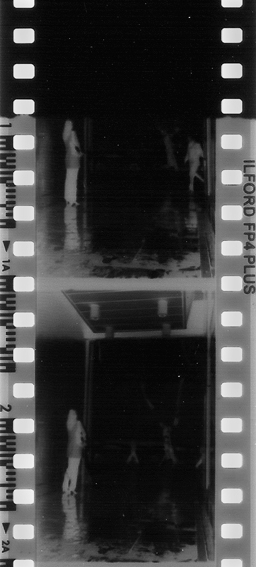 Eksik Fotoğrafın İçinde… / In The Missing Photograph…
