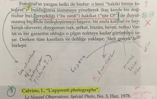 barthes_about calvino_tr